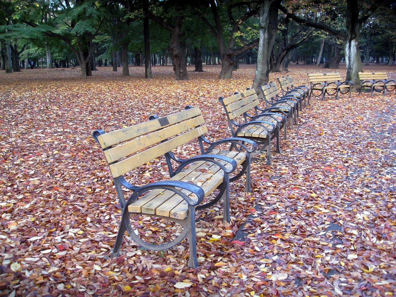 Ławki do parku – na co się zdecydować