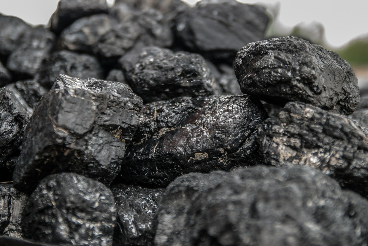 Rodzaje węgla, czyli jaki węgiel kamienny możemy kupić