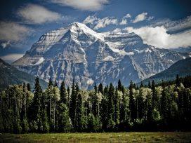 Dlaczego warto zamieszkać w apartamencie w górach